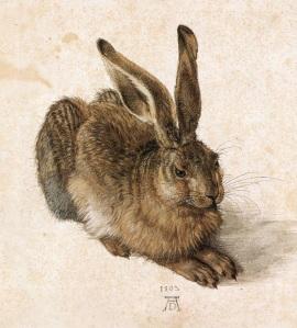 Liebre | Albrecht Dürer | 1502